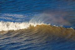 IMG_6819- Ocean and wind II (Rodolfo Frino) Tags: natur nature natura naturaleza natural sea ocean mar mer water agua blue brown wind viento foam espuma waves wave