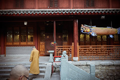 Monks (Leonid Plotkin) Tags: china mountain man religious temple asia buddhist traditional religion monk buddhism sacred tradition putuoshan holymountain sacredmountain