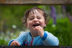 Happy baby, Patagonia (exposedplanet) Tags: family flowers patagonia baby love smile happy lupins lupines