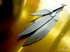 Wikinger-Messer  / Viking-knife (Ellenore56) Tags: 23052013 wikingermesser vikingknife wikinger viking messer knife klinge klingen handwerk klingenspiegel profil knives blade craft trade handcraft shape tread sideface metall metal metallen metallisch metallic messerhandwerk messerer cutler detail fokus focus moment augenblick foto photo perspektive perspective outlook vista farbe reflektion color reflection colour reflexion licht light inspiration imagination faszination magic magical explore explored panasonictz7 ellenore56 grind crosssection point edge cuchillo coltello couteau kniv scian aufmessersschneide onaknifeedge touchandgo onarazorsedge itsstillinthebalance