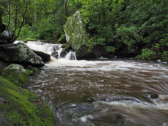 IMGPG15640 - Great Smoky Mountains National Park - Roaring Fork (David L. Black) Tags: nationalparks greatsmokymountainsnationalpark