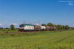 1009 - 652_084 + CISTERNE A MIGLIARINO (treno CALAMBRONE - TORINO) 14-5-2013 FULL HD (Frank Andiver TRAIN IN TUSCANY) Tags: italy train canon frank photo italia photos rail trains tuscany rails locomotive toscana treno tigre fs trenitalia treni ferrovie binario 633 e652 fullhd andiver frankandiver trainintuscany