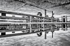 Kobe after the Rain (Ilko Allexandroff / ) Tags: bw white black reflection kobe reverse  allex  ilko