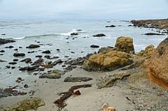 Estero Bluffs shoreline near San Geronimo Creek Photo