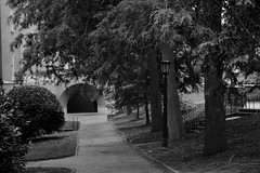 Row (skippyclese) Tags: trees blackandwhite bw campus path tunnel sidewalk bushes bicks