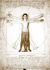 11_04_Adam_12a (Iwokrama) Tags: davinci dessin corps leonardo homme croquis vitruve