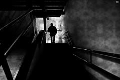 Discese verso gli inferi. (Viola30) Tags: persona scala erika bianco nero silhoutte bertoli masseria miniera monteneve vision:night=055