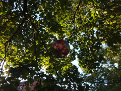 DSC00027 (andre vautour) Tags: walking found blog balloon things collection happybirthday approved sonycybershot andrevautour