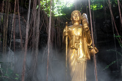 Buddhist Nature (Gregory Desimone) Tags: statue fog 35mm canon thailand temple rebel gold vines bangkok buddha t1i
