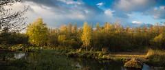 Mon refuge (Alexandre LAVIGNE) Tags: france nature automne landscape photography photo eau pentax paysage marais arbre picardie somme aisne feuillage saintquentin 02100 maraisdisle louisengival pentaxk5iis format2351 hdpentaxda15mmf4edallimited format235