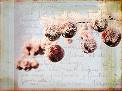 happy 2014! (♥Adriënne - catching up......) Tags: textured terneuzen winterinthenetherlands addyvanrooij redisforlove ♥adriënne panasonicfz150