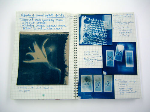 "visual diary – cyanotype experiments • <a style=""font-size:0.8em;"" href=""http://www.flickr.com/photos/61714195@N00/11737036524/"" target=""_blank"">View on Flickr</a>"