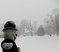 Let It Snow Let It Snow Let It Snow (marilyntunaitis) Tags: snow project snowman plush and freddie beyond 365 2014