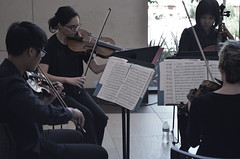 Interdependent (MPnormaleye) Tags: urban music musicians composition concert wideangle violin cello utata classical strings unposed museums ensemble quartet 18mm entertainers