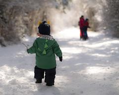 In My Own Time (westcoastcaptures) Tags: child boy toddler winter family snow stick sonya99ii minolta8020028apohsg fun walk trail gallopinggoosetrail victoriabc
