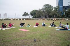 * (Sakulchai Sikitikul) Tags: sunyatsenmemorialpark park street snap streetphotography summicron sony a7s 35mm yoga stretching pigeon bird hongkong sheungwan leica