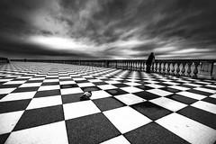 The Pigeon and Mrs. (jonnyamerica) Tags: terrazzamascagni pavimento scacchi chess bianoenero blackandwhite signora piccione pigeon cielo nuvoloso clouds nuvole nuvola deam pensieri thoughts love animal bird uccelli