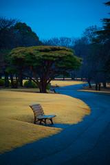 Silence (Luis Montemayor) Tags: japan japon shinjuku gyoen shinjukugyoennationalgarden garden empty vacio banca chair bench road camino
