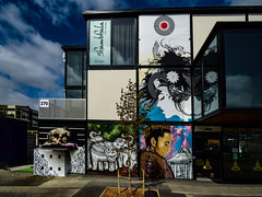 Shambhala and Thai Box (Steve Taylor (Photography)) Tags: wongi wilson shambhala shambala thaibox 270 elephant boxer hair design kneeling ring hennah tattoo temple feather hairdo art architecture graffiti mural streetart building window girl lady woman asia newzealand nz southisland canterbury christchurch cbd city cloud sky sunny sunshine tree flower henna shambalahairdesign