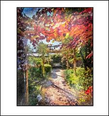 ENGLISH GARDEN (DEREK HYAMSON . OVER 5 AND A HALF MILLION) Tags: englishgarden calderstonespark liverpool impression hdr