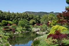 Zen garden (hybrid.photographer) Tags: lac natureetpaysages languedocroussillon bambouseraie jardin couleurs europe paysages france landscapes natureandlandscapes colors coloré garden lake