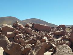 Vizcachas <3 (Wen Rou) Tags: sanpedrodeatacama elloa reservanacionallosflamencos