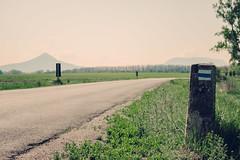 Roadside (ZoltanSz) Tags: kéktúra blue path blauen weg balaton badacsony hiking backpacking