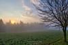 Nebelstimmung im Frühling (weltenforschererzgebirge) Tags: nebel fog sonnenaufgang sunrise frühling spring licht light hdr high dynamic range canon landschaft landscape erzgebirge sachsen saxony deutschland germany morgenstimmung nebelstimmung