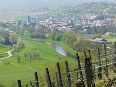 Enzschleife bei Mühlhausen (Baden-Württemberg) (thobern1) Tags: enzschleife enz badenwürttemberg germany enzkreis mühlhausen flussschleife