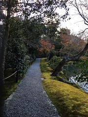 QUiet PAth (pooncu) Tags: kinkakujicho path landscape kyoto japan trees stone lawn green nature scenary garden