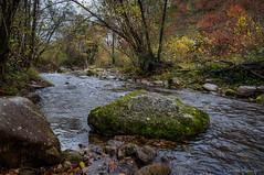 A su suerte (SantiMB.Photos) Tags: 2blog 2tumblr 2ig río river baztán cascada waterfall xorroxin 500px navarra otoño vacaciones2015 iñarbil españa esp