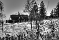 Haunted Historic New England Barn with a Ghost? (Skyelyte) Tags: historicbarn newengland ghost hat derbyhat stetsonhat connecticut haunted hauntedbarn architecture antique old interesting spirit creepy plants snow grass winter cold blackandwhite monochrome woodburyct country rural scenic outside outdoorphotography outdoor fence hill trees evergreen wetland wetlandplants branches farm weathervane indiangrass sorghastrumnutans breeze yellowindiangrass barn aplaceforbarley gable gabledroof cupola wood woodenbarn wooden door windows ornament rooftopornament hayloft moworhayloft bankedbarn newenglandbarn sky gambrel gambrelbarn