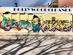 The Goggled Hollywood Cleaner (lcncrtr) Tags: iphone7 trees shadows shadow cleaner hollywood tags goggles colors graffiti streetart chicago wickerpark