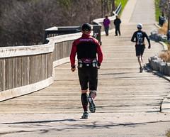 _DSC6232 (doug.metcalfe1) Tags: 2017 aurora dougmetcalfe mckenziemarsh nature nokiidaatrail ontario outdoor spring yorkregion boardwalk jogger