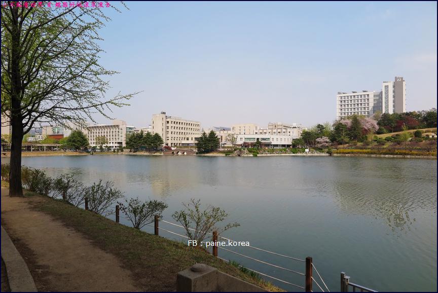 首爾建國大學 (2).JPG