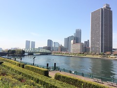 Shinonome Canal (walking.biking.japan) Tags: kotoku river tokyo