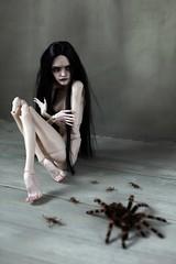 Arachnophobia (dolls of milena) Tags: bjd abjd art doll pashapasha pasha setrova pulse
