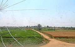 EGYPT - WINDOW VIEW (Punxsutawneyphil) Tags: africa broken window glass train tren scenery riss fenster brokenglass egypt felder eisenbahn railway zug delta nile afrika windowview egipto agriculture oriental orient glas gypten egitto  fensterblick  nildelta