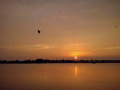 sunset naihati shirshasin lgoptimusl5ii (Photo: Shirshasin on Flickr)