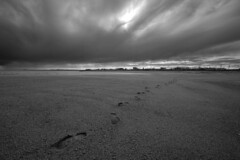 Plage de Gallix (patricestg) Tags: sea blackandwhite bw mer beach clouds spring sand noiretblanc traces sable nb qubec northshore stlawrence stlaurent nuages pas plage printemps footprint ctenord d700
