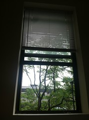 nomadic 3 (h.a.2012) Tags: newyorkcity friends home window place thinking rest inside organization nomadic recharging