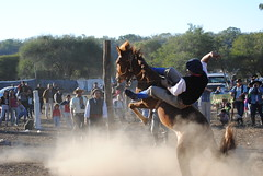DSC_0631 (jaramillosergio) Tags: criollo caballos gauchos norte humahuaca jujuy doma gauchas jineteada sanpedrodejujuy montas gauchaje