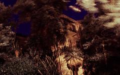 Horror hotel in Mali Loinj (N-Sarn) Tags: longexposure trees windows abandoned architecture night forest palms island mediterranean wind balcony ruin croatia disused damaged adriatic ruined hrvatska lussino dysfunctional kvarner loinj