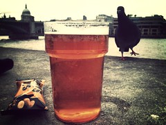 London Tribute (Lens Envy) Tags: london skyline pigeon stpauls pint nobbysnuts theanchor pintofbeer tributebitter haveadrink havingadrink staustellbrewery pintofale photobomb havingapint drinkbythethames peanutsandbeer pintofbitter mammothfilter cornishpaleale pintbythethames pigeonscavenging packetofpeanuts nutsandbeer