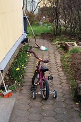 (das de perro) Tags: street bike bicycle reykjavic iceland islandia calle europa europe bicicleta biking biker nordic europeanunion sland icelandic bicicletero nordico
