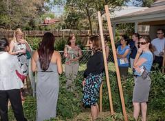_R7A6168 (DU Internal Photos) Tags: garden outdoorgarden sazza sazzaworkshop