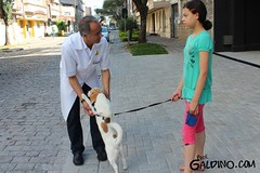 Professor Galdino (ProfGaldino45) Tags: de curitiba professor prof camara municipal vereador galdino professorgaldino profgaldino
