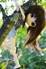 I live with a monkey (foalynne) Tags: tree cute doll korea clothes wig pullip obitsu foalynne