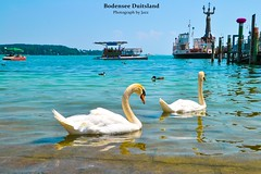 bodensee 190 (Jazziga vos) Tags: bodensee