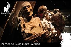 Momias de Guanajuato - MXICO (Leyva Group International) Tags: trip travel viaje tourism museum mexico tour group international sueos guanajuato museo traveling mummy turismo mummies global leyva viajar momia momias experiencias agencia